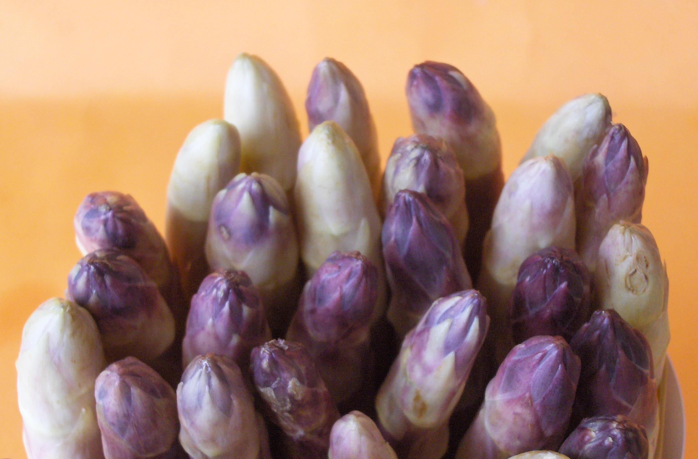 asparagi cilavegna 3