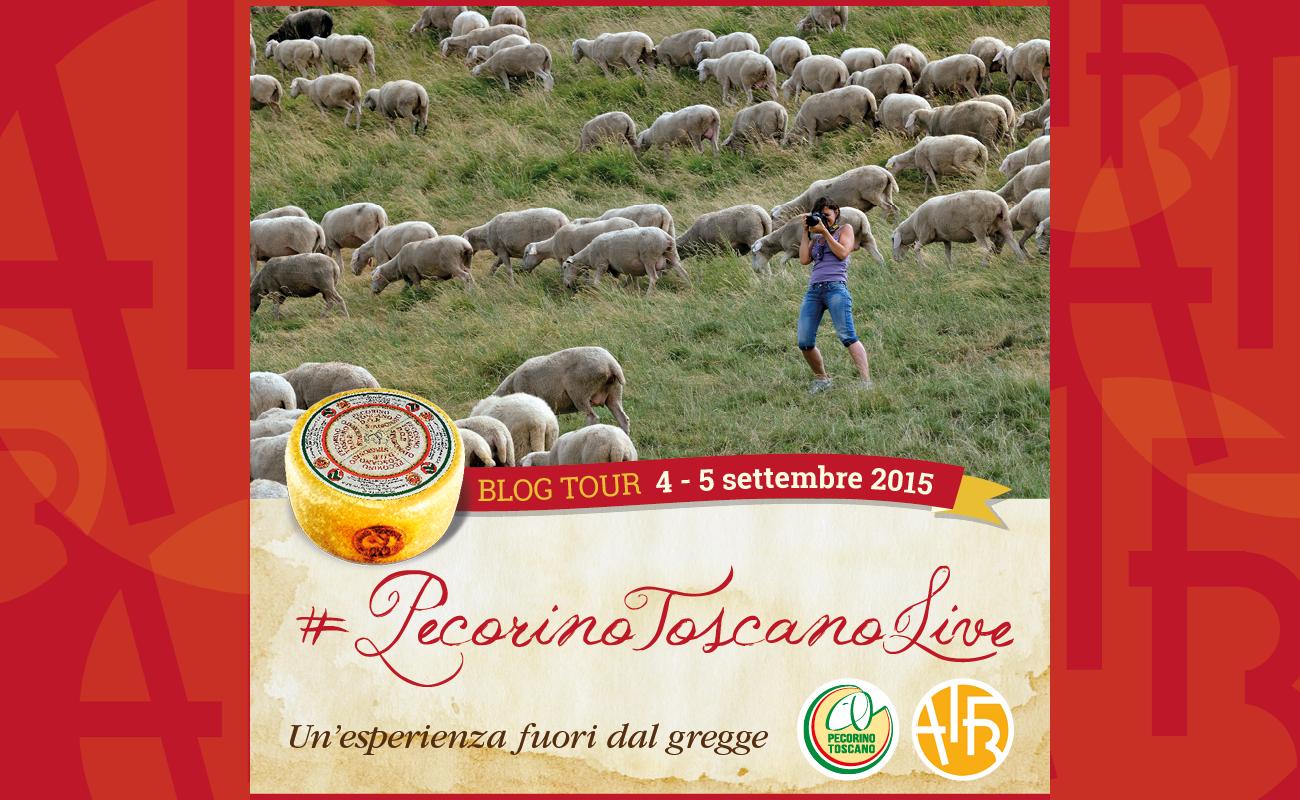 Banner Pecorino Toscano DOP