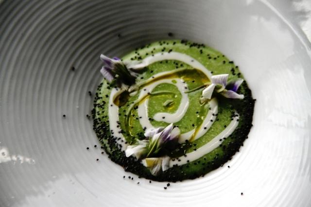 Polentina verde Klugmann