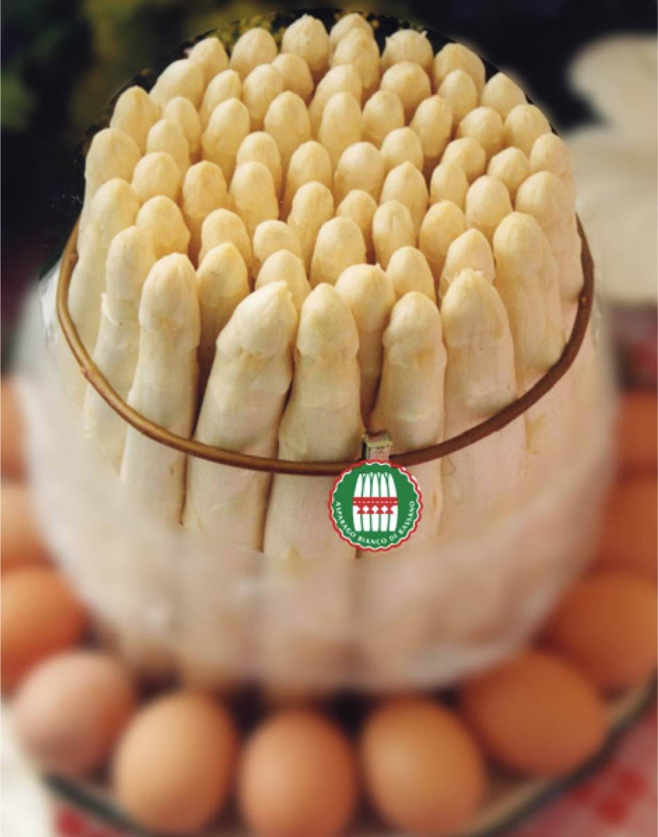 asparago 11