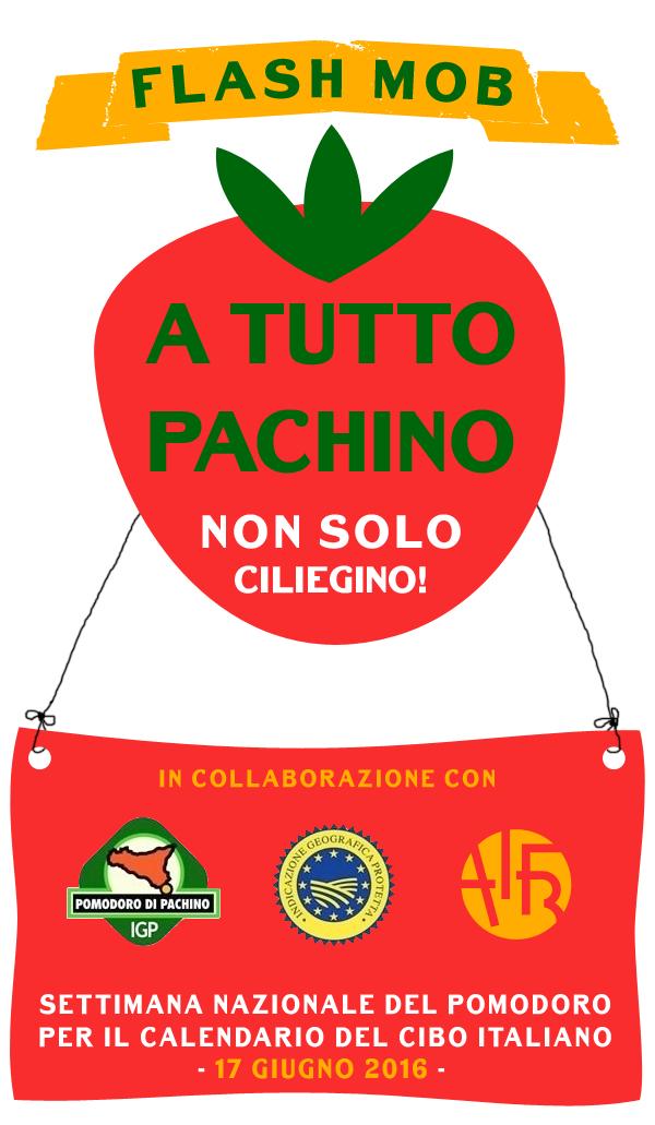 CONTEST PACHINO_2
