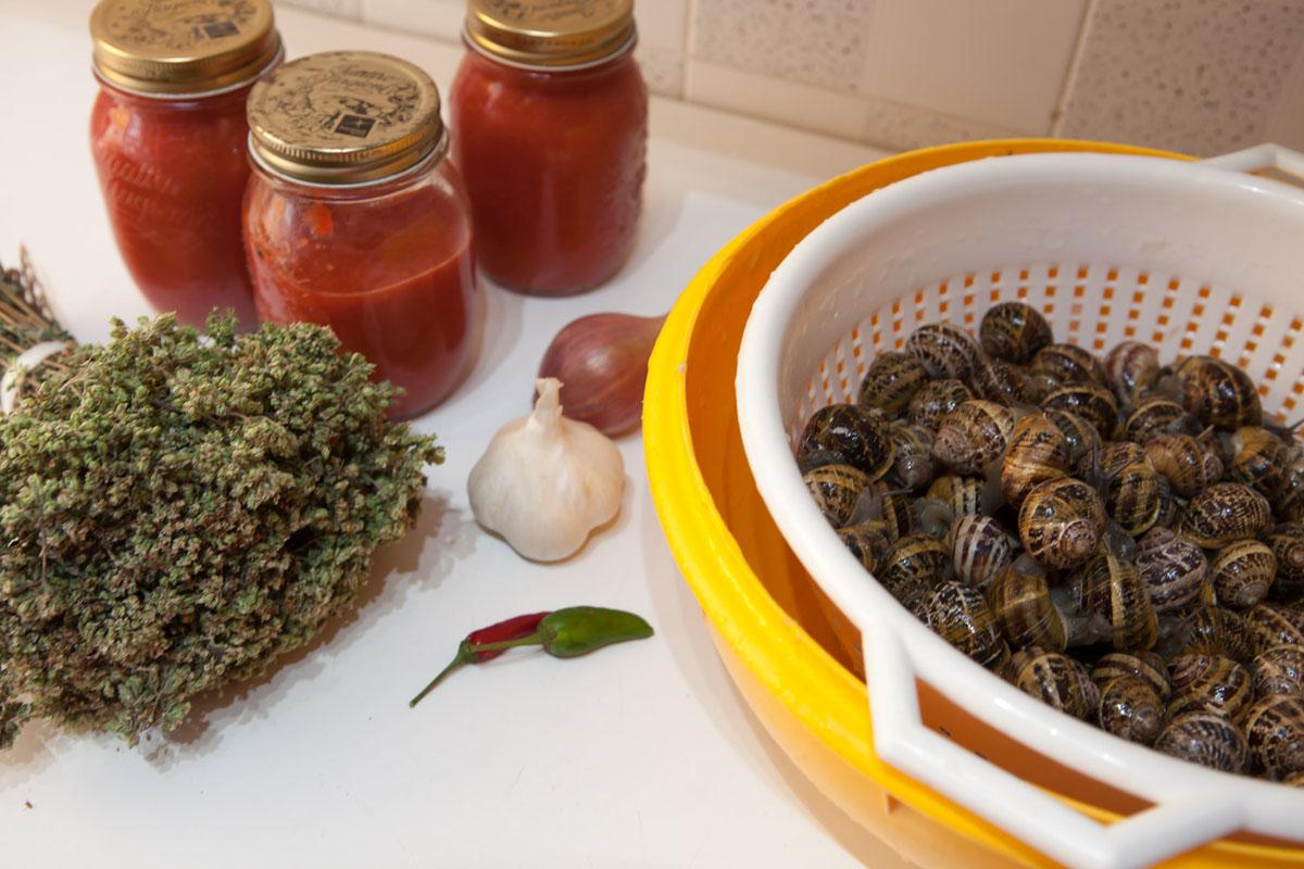 Rane e lumache aifb for Cucinare le lumache