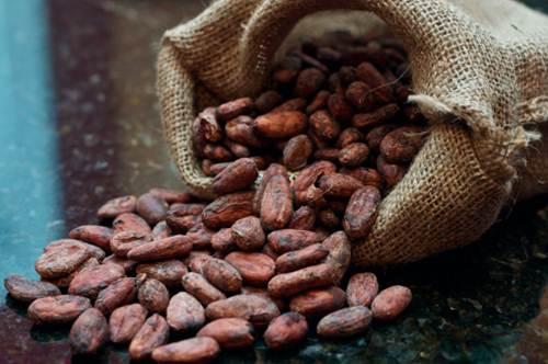 Bag of spilt cocoa beans
