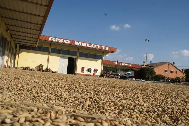 Melotti_foto3