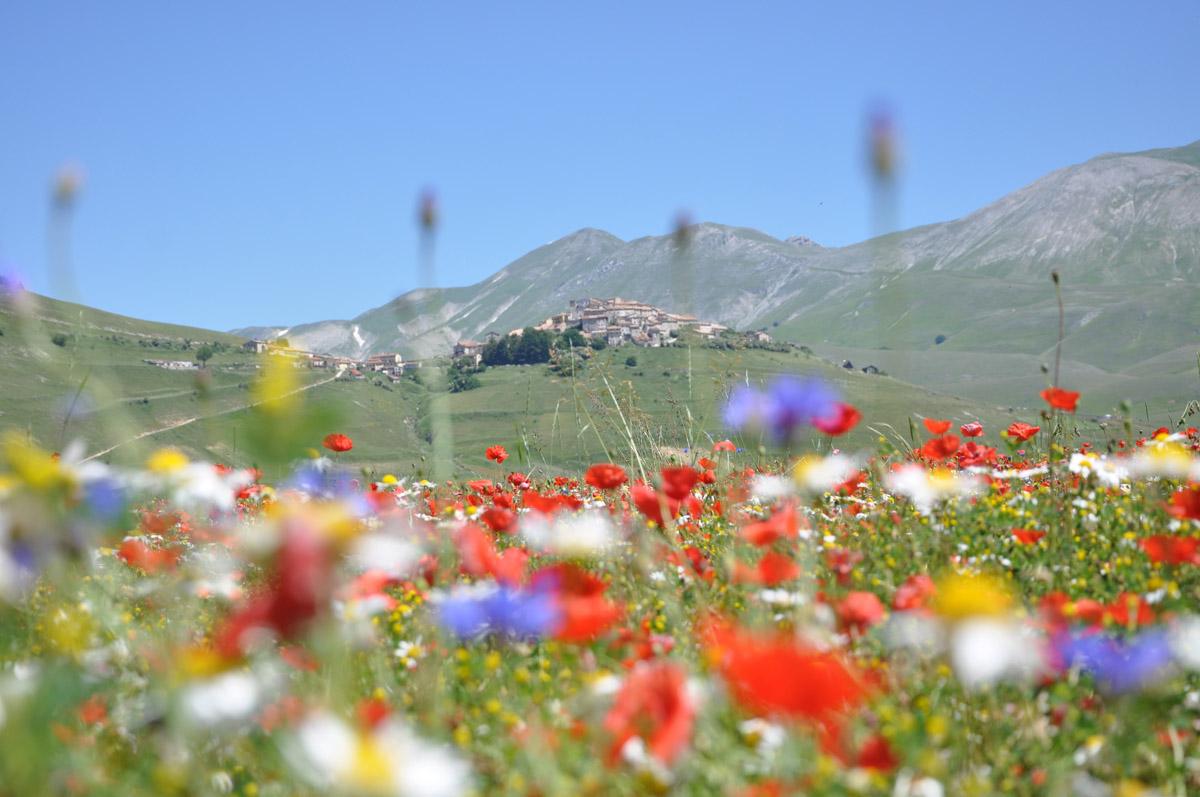 Gran Tour Umbria lenticchie 3 panorama