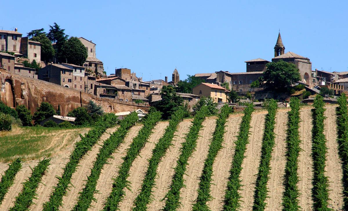 Gran Tour Umbria vini Orvieto