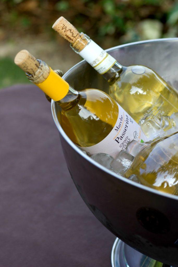 cento ore piceno velenosi vini