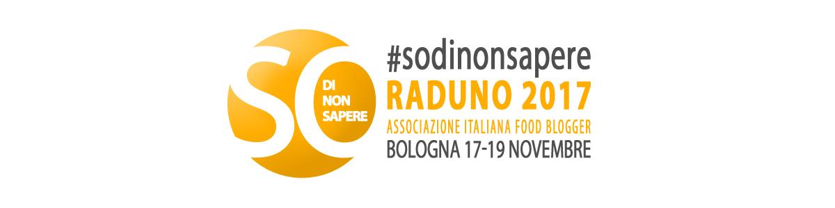 Logo Raduno 2017