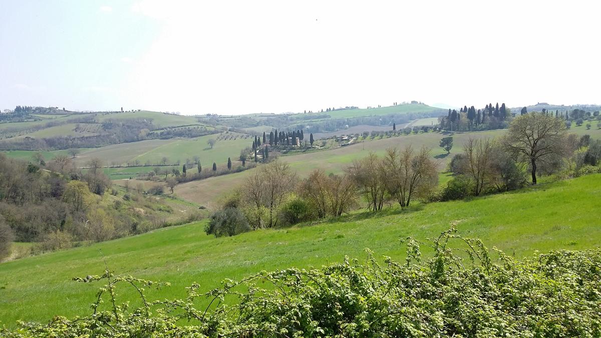 Gran Tour Toscana Val d Orcia