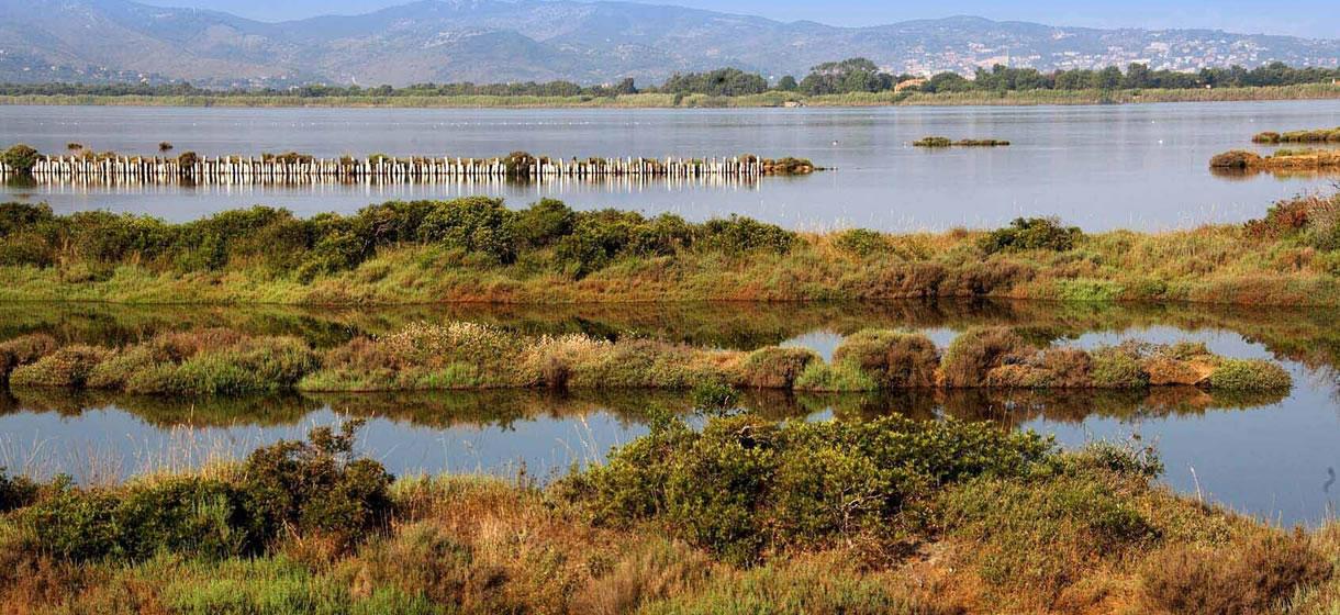 grantour-toscana-laguna-ecosistema