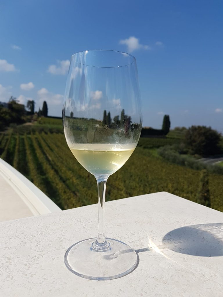 Poggio Le Volpi, un vino bianco tipico della zona dei castelli romani