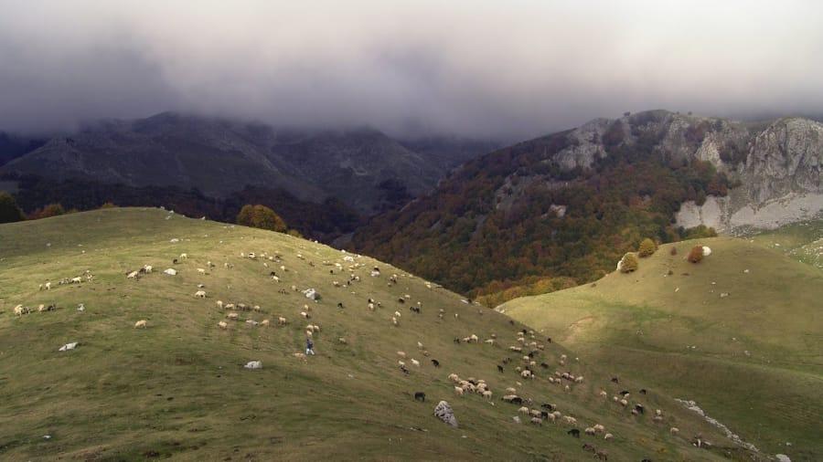 La Ciociarìa è una zona dove grazie alla pastorizia abbiamo una buona produzione di formaggi