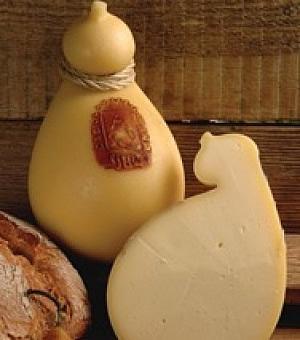 formaggi molisani